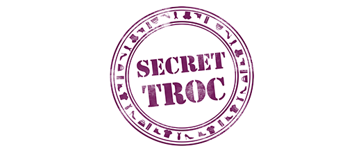 Logo Secret Troc