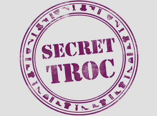 Logo Secret Troc